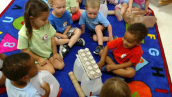The Significance of Trust in Early Childhood Education
